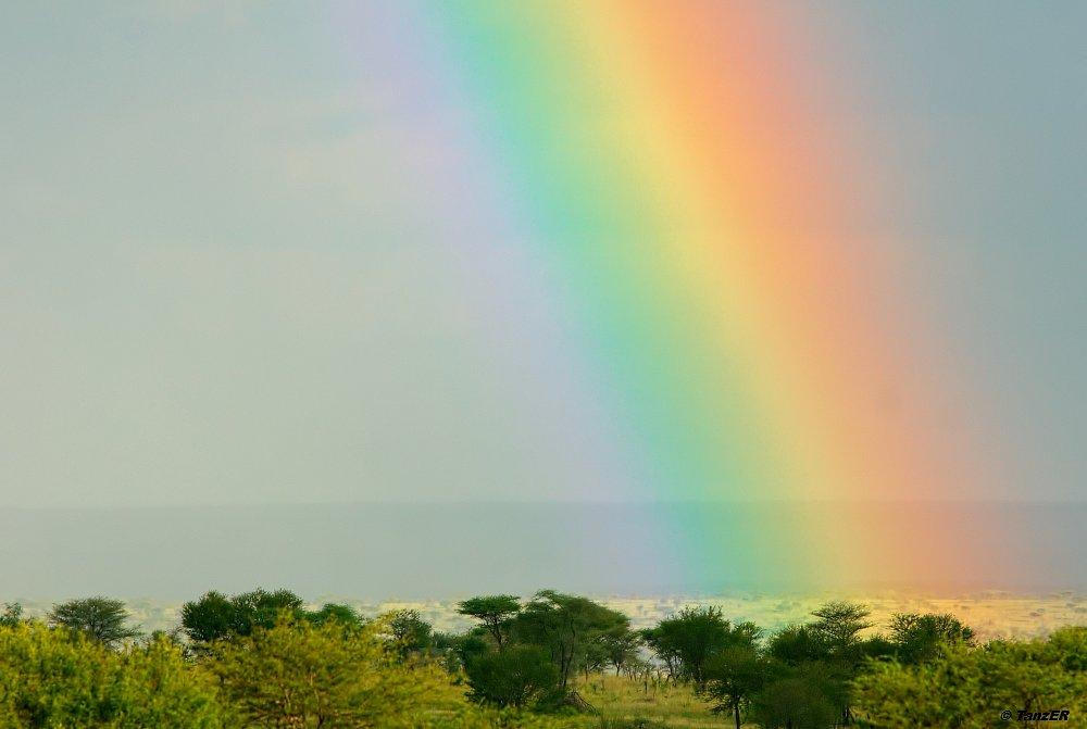 Regenbogen über der Togora Ebene