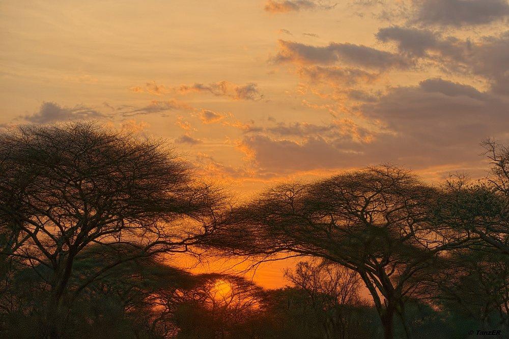 Sonnenuntergang im Katavi