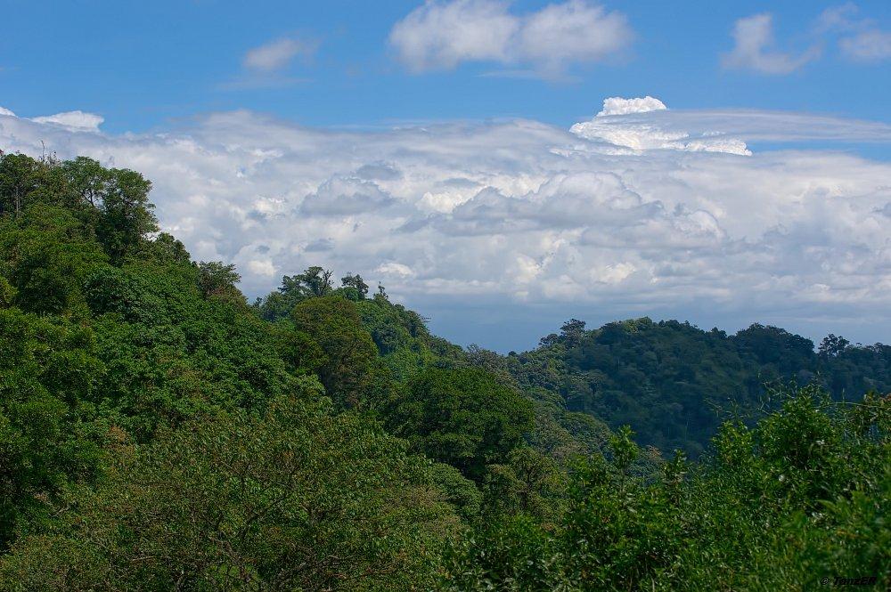 Rand des Ngurdoto Kraters